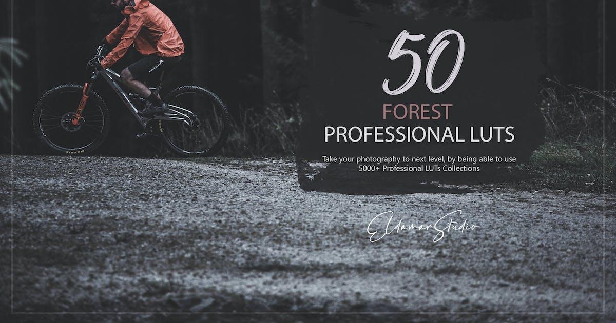 Download 50 Forest LUTs Pack by Eldamar_Studio