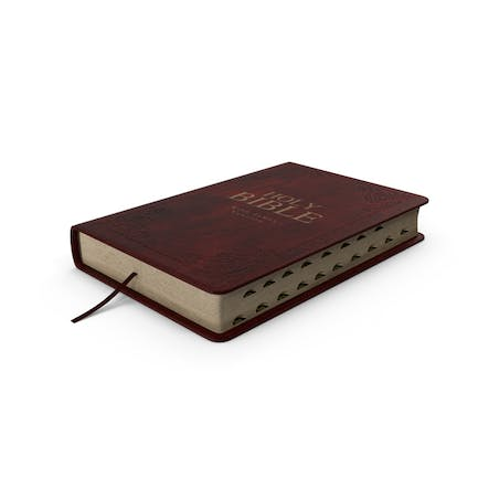 Holy Bible Closed Book