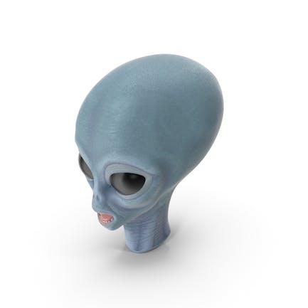 Cabeza Extraterrestre Espacial