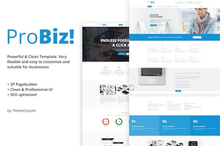 ПроБиз! - Творческий многоцелевой бизнес-шаблон
