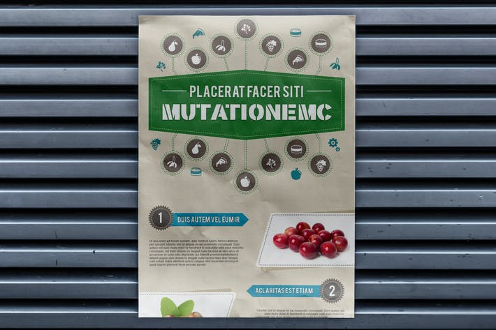 Thumbnail for Infographics Template – Food & Nutrition Theme