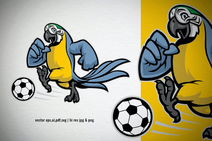 Thumbnail for blue gold parrot macaw playing soccer