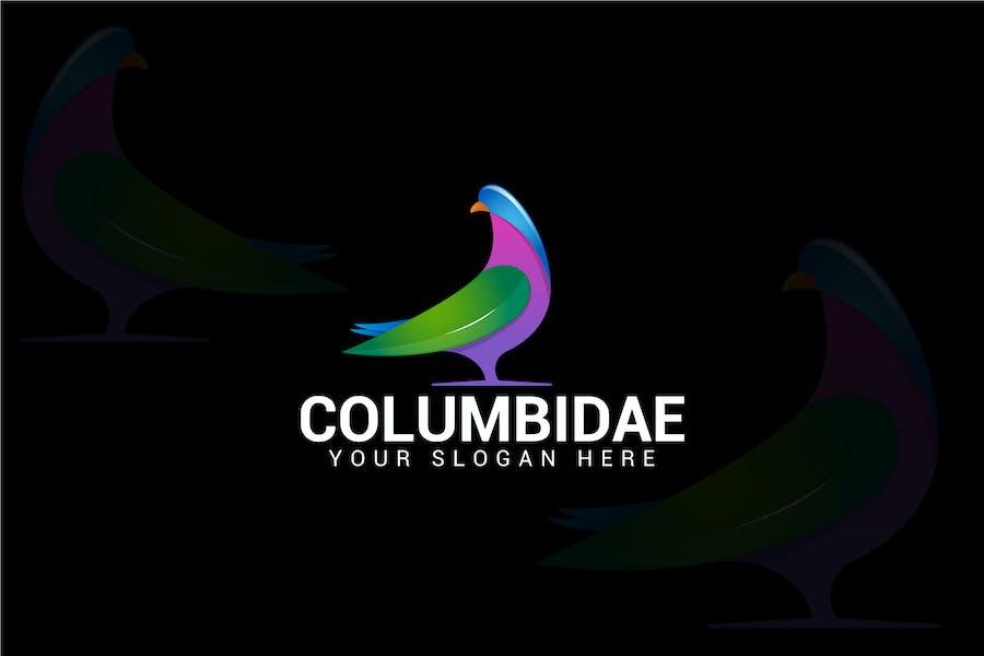 COLUMBIDAE