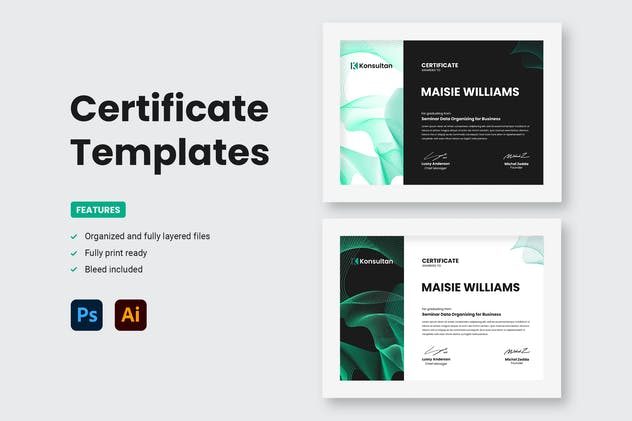 Certificate - Konsultan 1