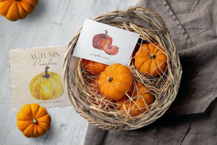 Thumbnail for Cozy autumn watercolor pumpkins set