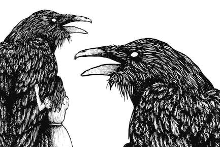 Raven Scratchboard Illustration