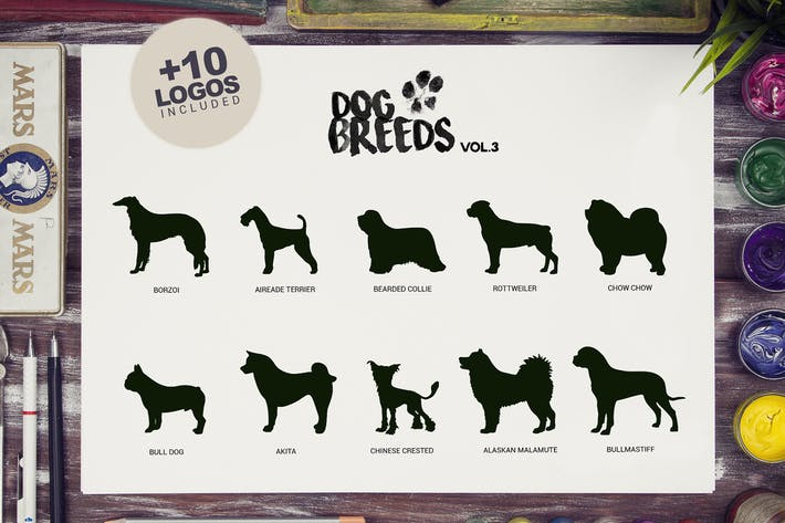Thumbnail for 10 Dog Breeds vol3 + Bonus
