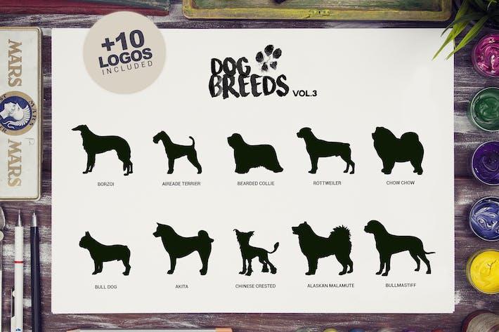 Cover Image For 10 Dog Breeds vol3 + Bonus