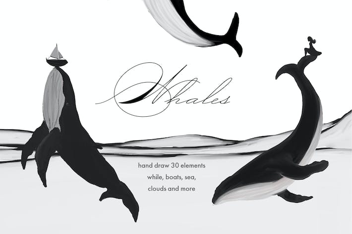 Thumbnail for Whales - black and white prints