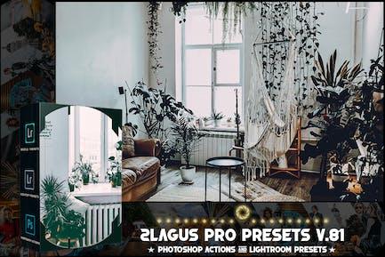 PRO Presets - V 81 - Photoshop & Lightroom