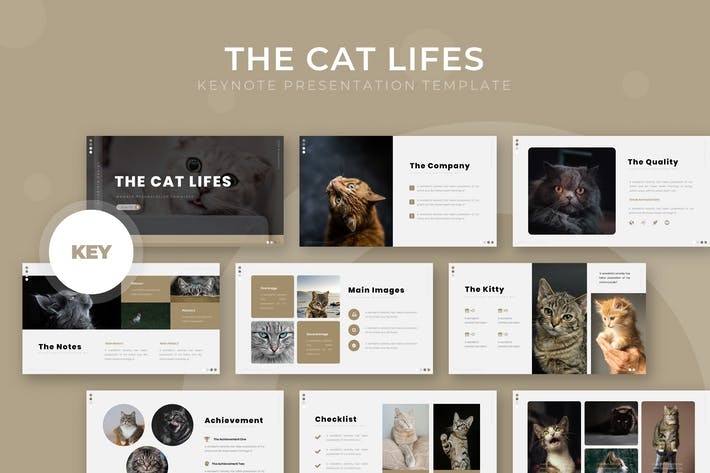 Thumbnail for The Cat Lifes - Keynote Template