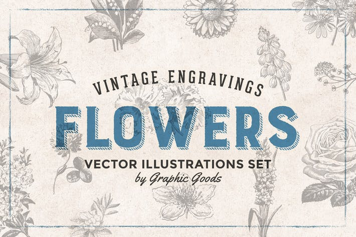 Flowers - Vintage Engraving Illustrations