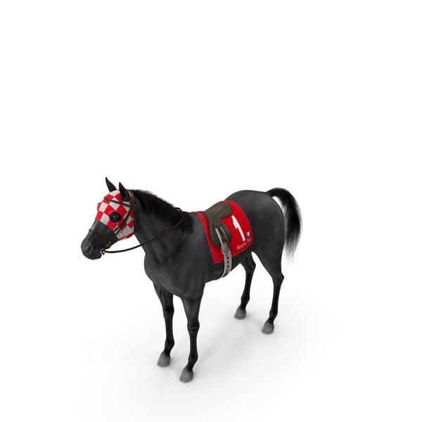 Black Racing Horse Fur