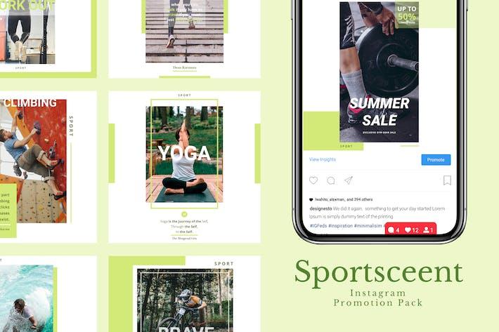 Thumbnail for Sportscreent - Instagram Feeds Pack