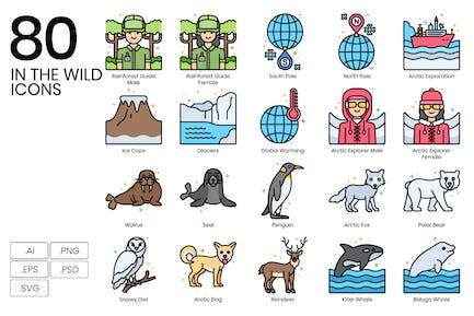 80 In der Wildnis Icons - Vivid Series