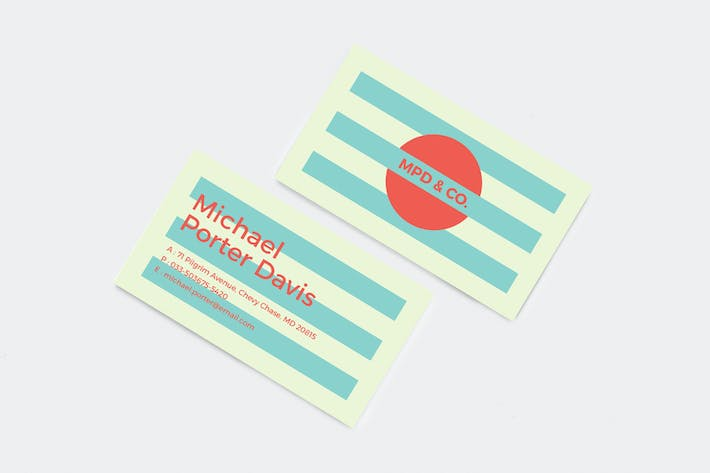 Thumbnail for Professional and Creative Business Card 01