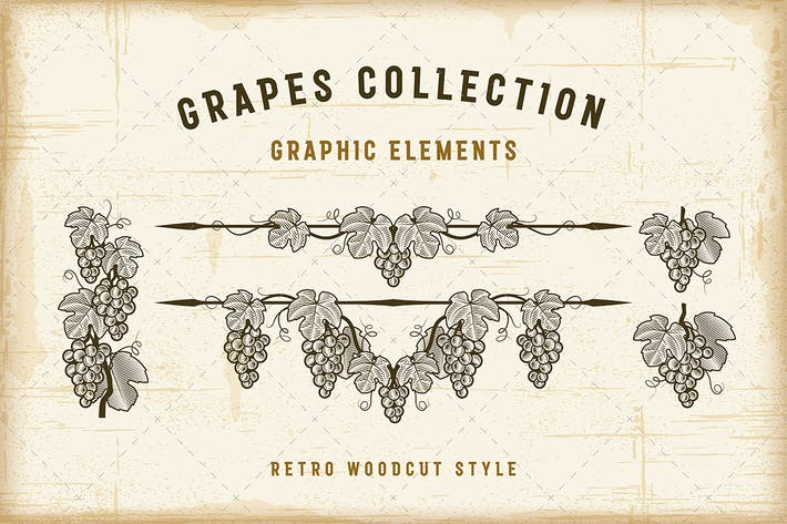 Cover Image For Retro Grapes Collection