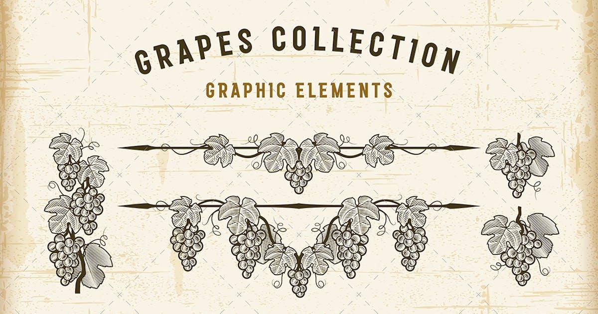 Retro Grapes Collection by iatsun