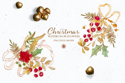 Christmas flowers - watercolor clipart
