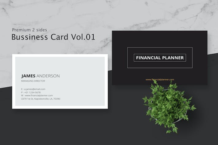 Thumbnail for Business Card Pro V.001
