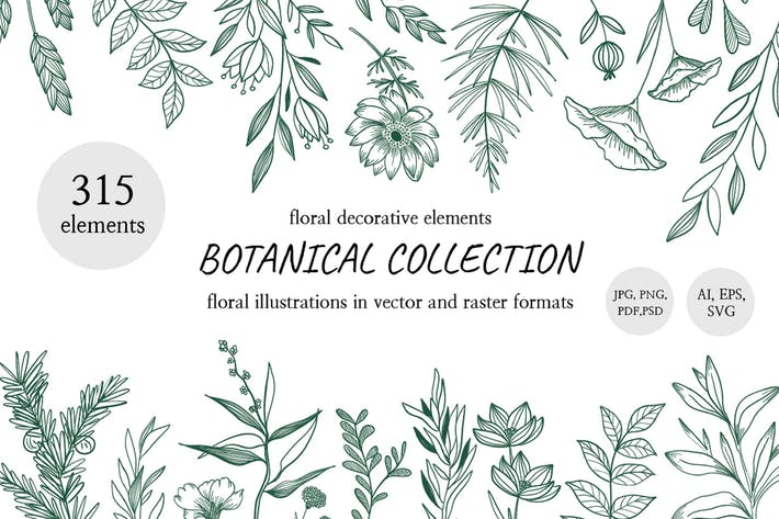 Thumbnail for Collection Hand Drawn Floral Decorative Element