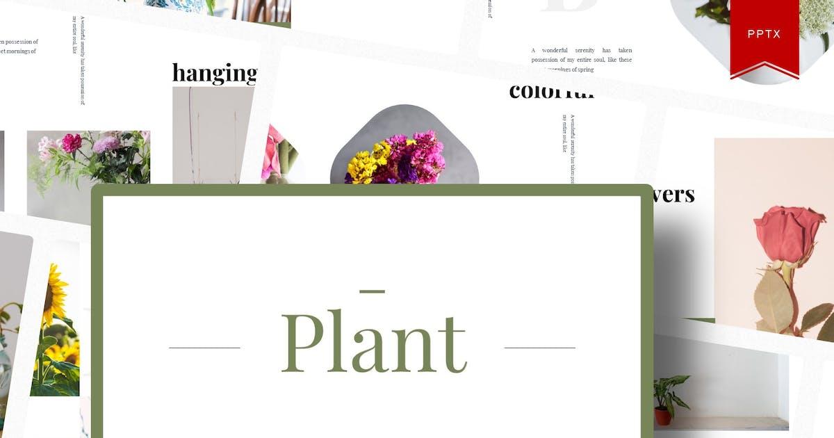 Download Plant   Powerpoint Template by Vunira
