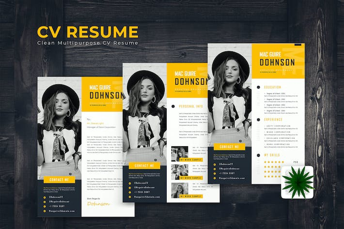 Thumbnail for Stylish Resume Template