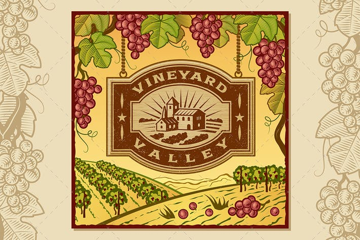 Cover Image For Vineyard Valley