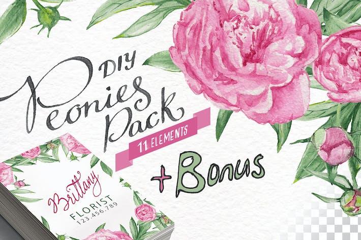 Cover Image For Watercolor Peonies DIY Pack +bonus