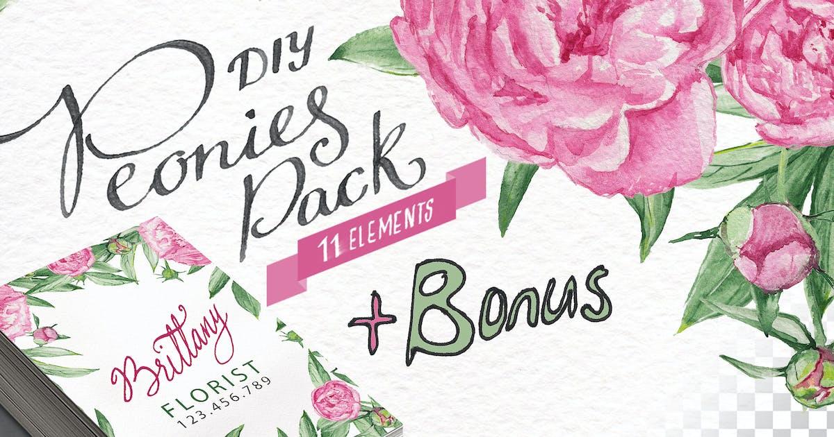 Download Watercolor Peonies DIY Pack +bonus by BlessedPrint