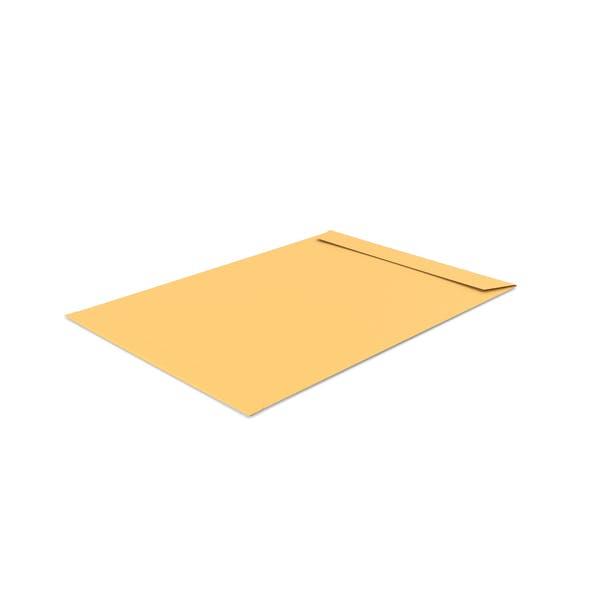 Cover Image for Catalog Envelope
