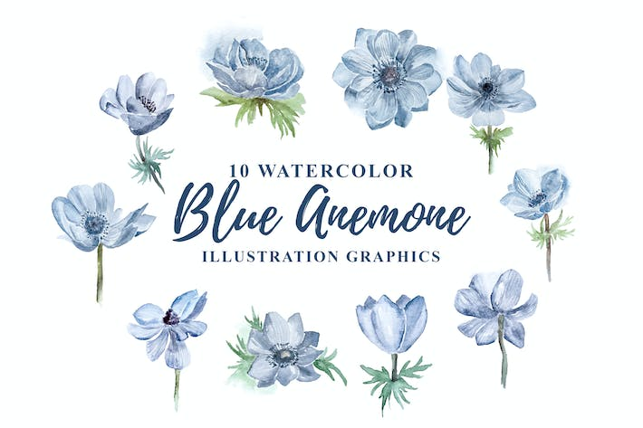 Thumbnail for 10 Watercolor Blue Anemone Flower Illustration