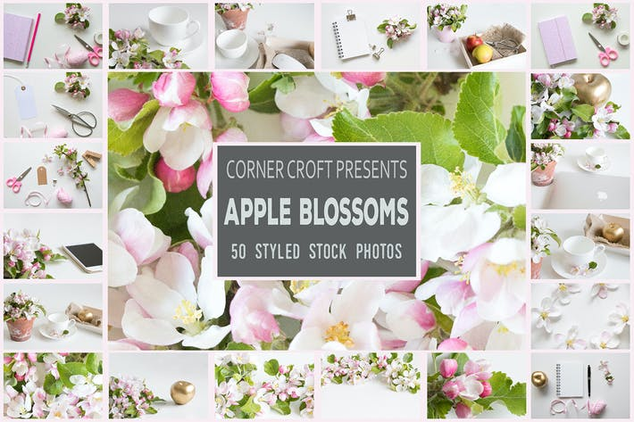 Cover Image For Apple Blossom Styled Stock Photo Bundle