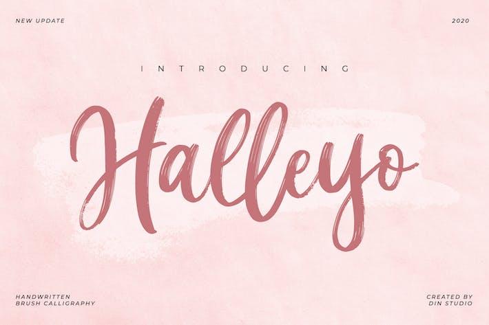 Thumbnail for Halleyo