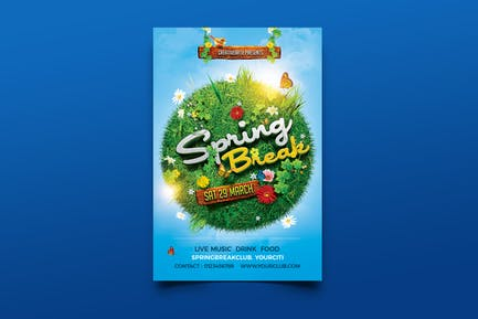 Spring Break / Summer Party Flyer