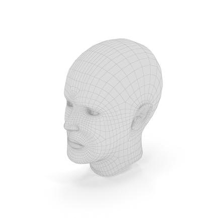 Menschlicher Kopf Wireframe