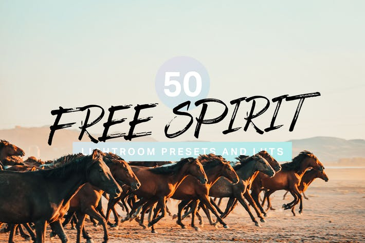 Thumbnail for 50 Free Spirit Lightroom Presets