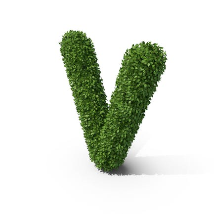 Letra V en forma de seto