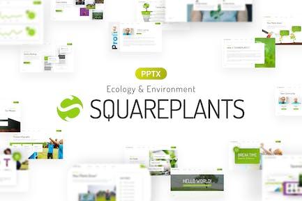 Squareplants Ecology & Environment PowerPoint Temp
