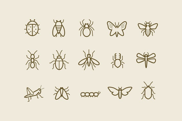Thumbnail for 15 Insect Icons