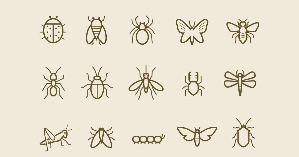 Download 15 Insect Icons by creativevip