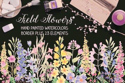 Field Flowers: Watercolor Border plus Elements