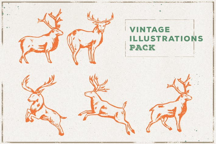 Thumbnail for Vintage Deer Illustration Pack