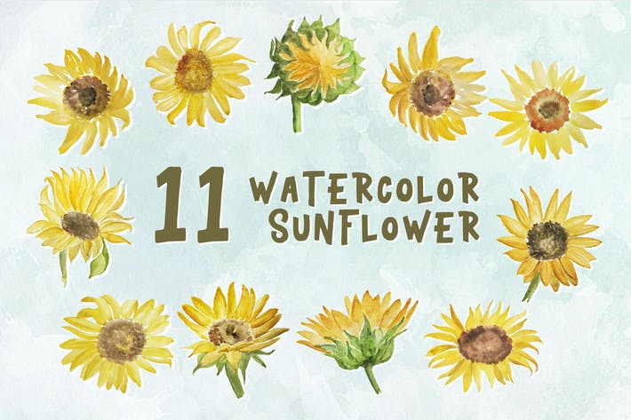 Thumbnail for 11 Watercolor Sunflower Illustration Graphics