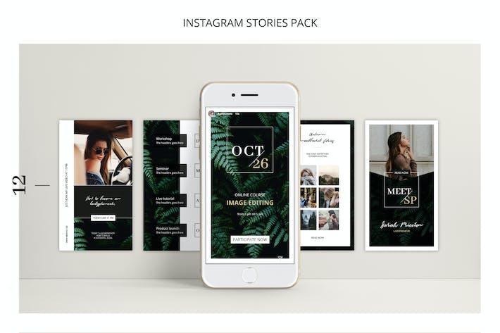 Thumbnail for FERNS Instagram Stories Pack