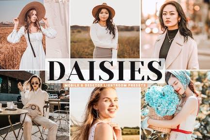Daisies Mobile & Desktop Lightroom Presets