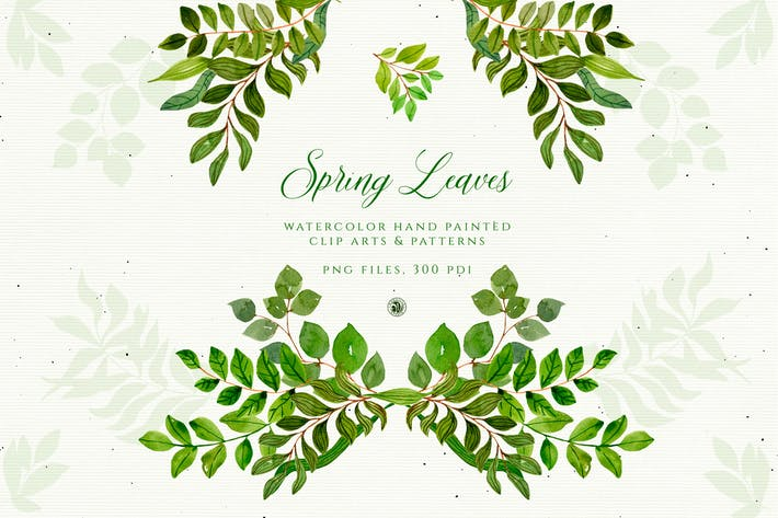 Cover Image For Spring Leaves