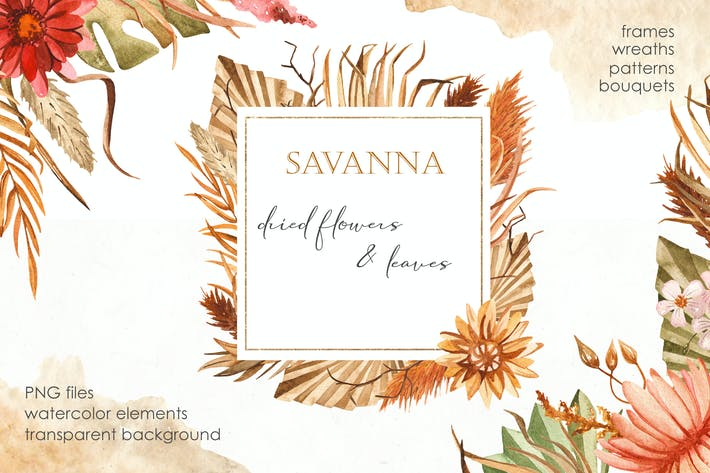 Thumbnail for Watercolor Savanna dried flowers and leaves