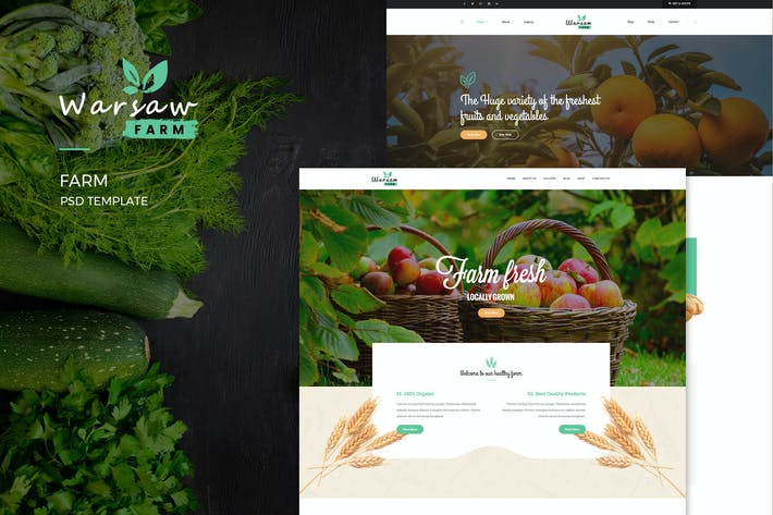 Thumbnail for Warsaw : Organic Fruits & Vegetables PSD Template