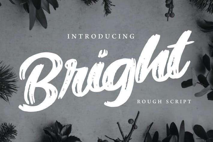 Thumbnail for Bright | Modern Rough Script Font